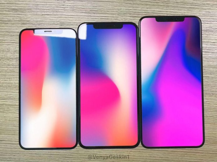 Display screen of the next generation iPhone X version ...